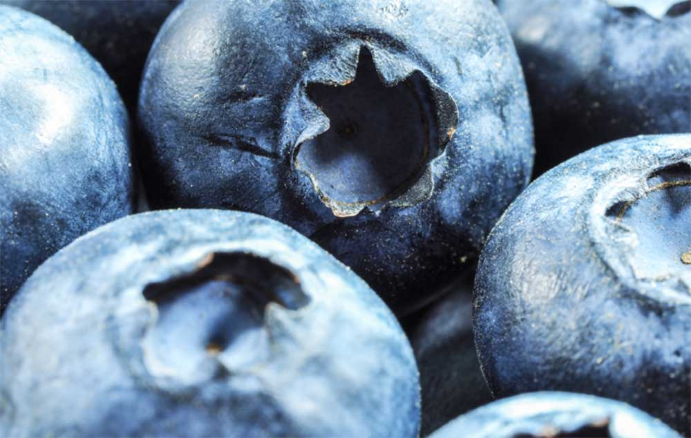 A picture of a blueberry, which is a symbol for Borgwaldt's aromatic products.